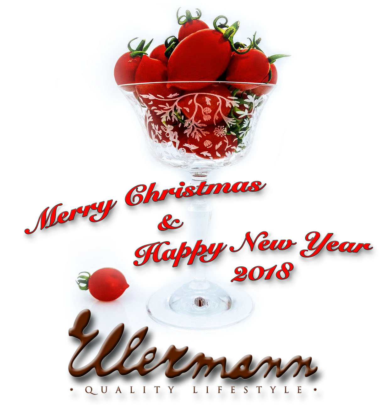 Merry Christmas & Happy New Year 2018 from Ellermann