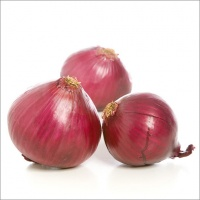 Red Onion Extra Quality logo