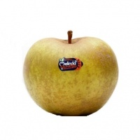 Renetta Apple